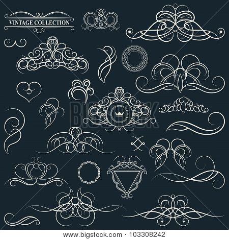 Vintage set decor elements. Elegance old hand drawing set. Ornate swirl leaves label acanthus elemen