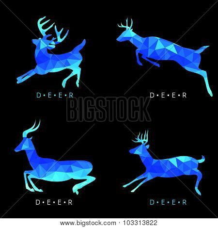 Deer - Blue low poly vector set Design