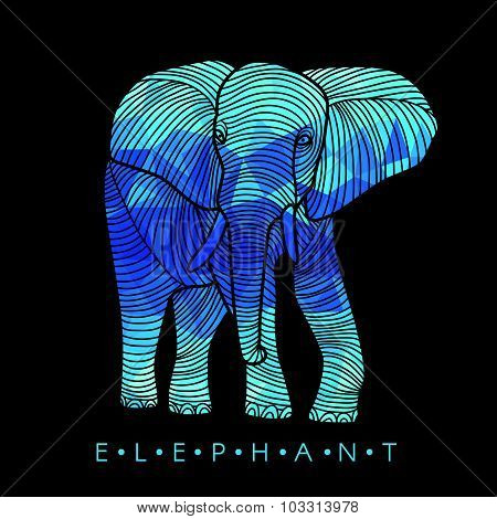 Elephant - line border and Blue low poly vector Design