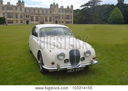 Classic White Jaguar