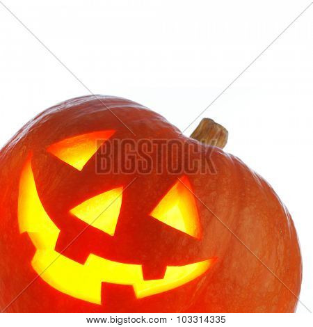 Jack O' Lantern Halloween pumpkin isolated on white background