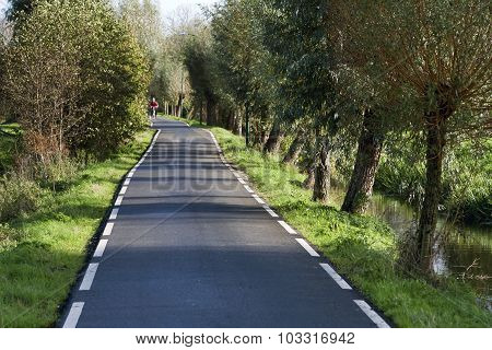 Single Lane Country Road