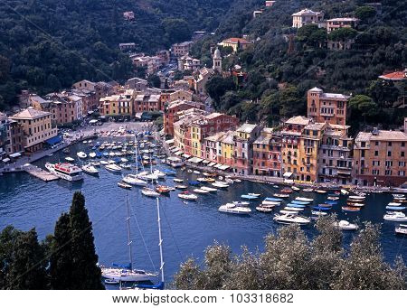 Portofino town and harbour.
