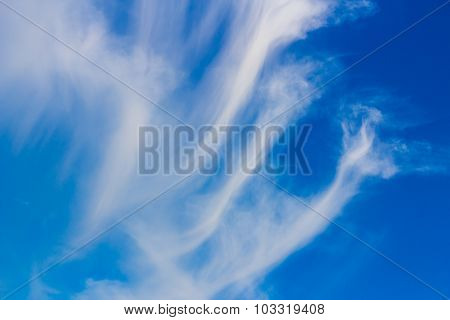 Fluffy cirrus cloud in the blue sky