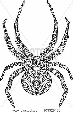 Hand drawn spider illustration decorated with zentangle ornaments. Drawing for Halloween