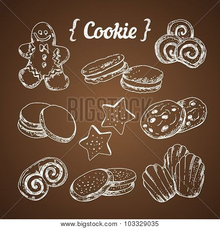 Cookie and sweet pastry hand sketched illustration vector
