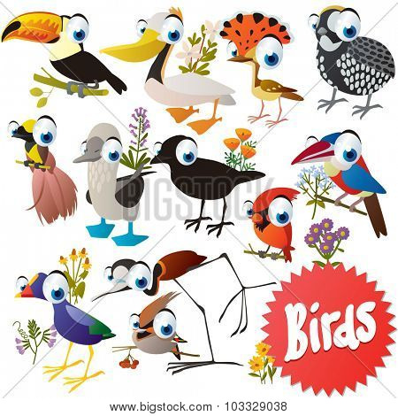 Adorable cartoon comic birds set: toucan, pelican, cock, quoll, boobie, bird of paradise, crow, cardinal, waxwing