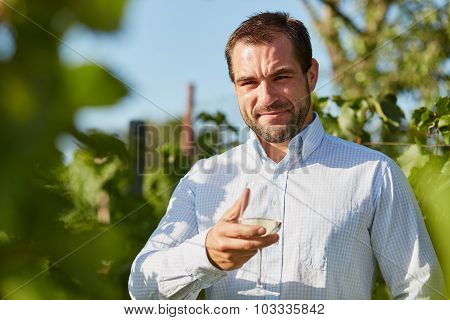 Man With A Glass Of White Wine In Hand In The Vineyard.