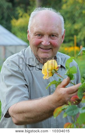 Grower Of Roses