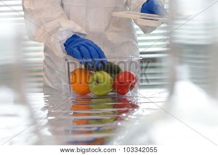 Scientist dressed in protective gear placing fruits and vegetables in plastic container.