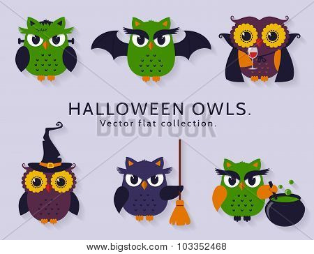Halloween Owls. Vector Set.