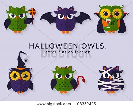 Halloween owls. Vector set.