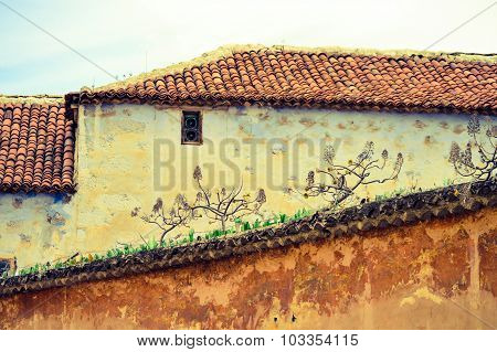 Old prison wall with pieces of glass