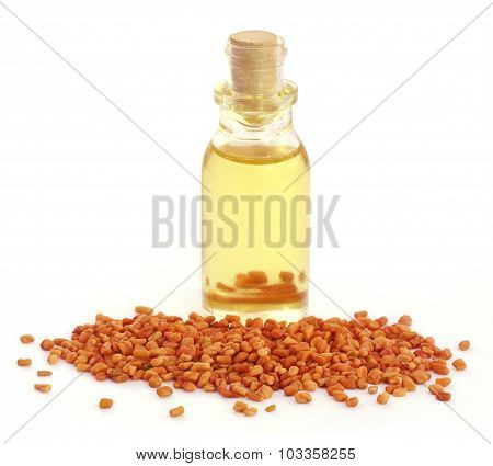 Fenugreek With Oil
