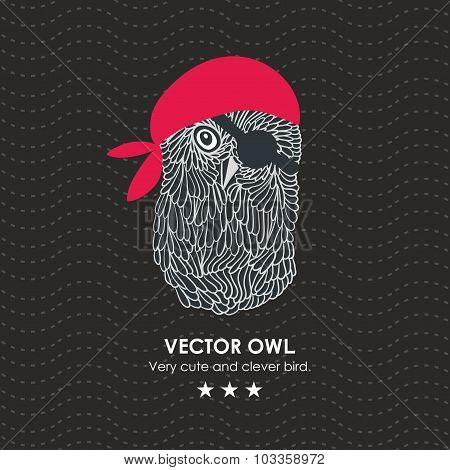 Cute little pirate owl.