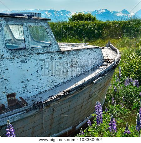 White Weathered Fishing Boat Floating On Sea Of Green
