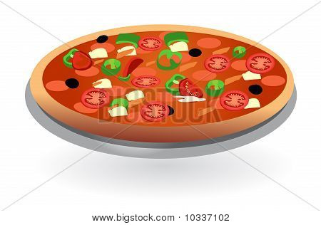 isolated tomato pizza vector