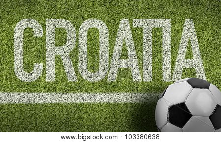 Croatia Ball in a Soccer field