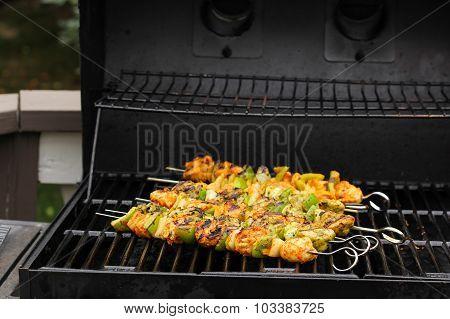 Chicken Tikka kebob on skewers