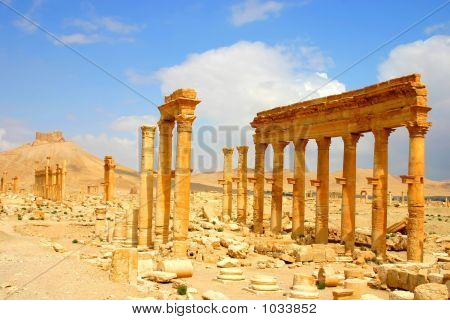 Palmyra Syria 36