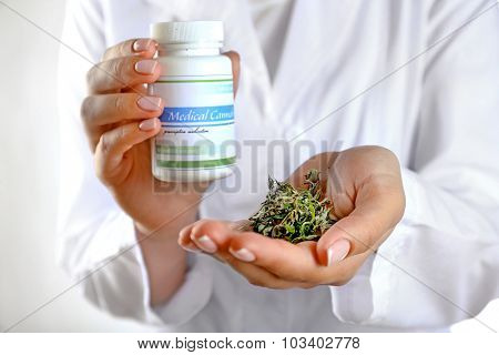 Doctor holding bottle of medical cannabis and dry herbs close up