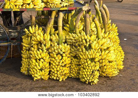 Indian Bananas