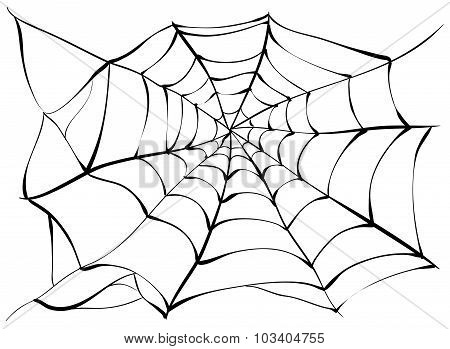 Spiderweb. Big black spider web