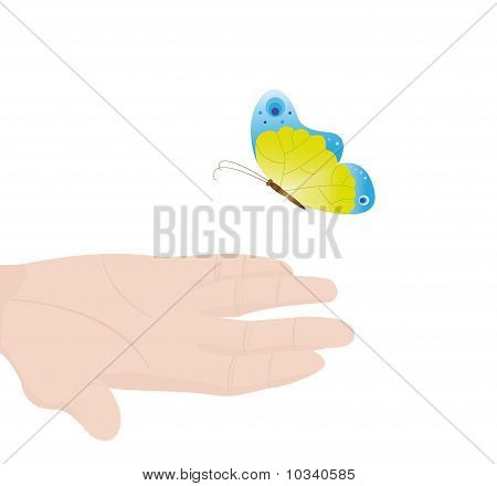 Hand With The Butterfly