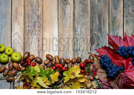 Autumn Leaves And Acorns Over Wooden Background. Free Space For Your Text.