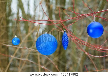 Holiday Christmas Decorations With Glitter Blue Bauble Ornaments Hanging On Tree Red Branches