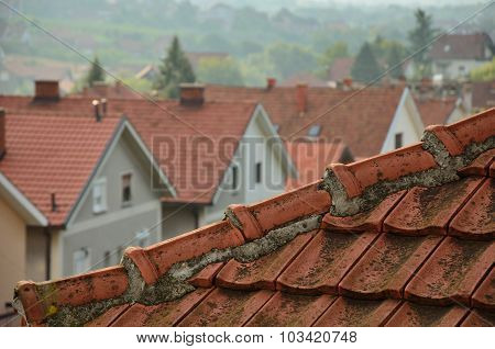 Tiled Roof And Line Of Houses