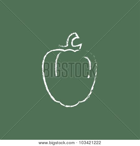Bell pepper hand drawn in chalk on a blackboard vector white icon isolated on a green background.