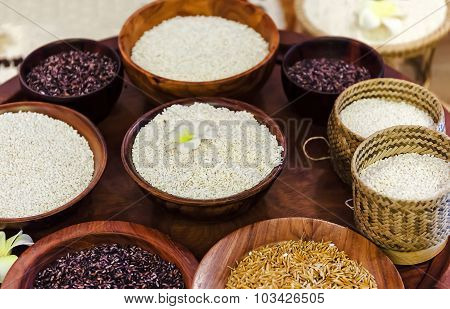 Dishes With Different Types Of Rice