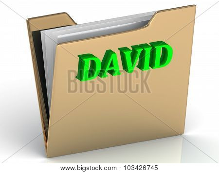 David- Name And Family Bright Letters On Gold