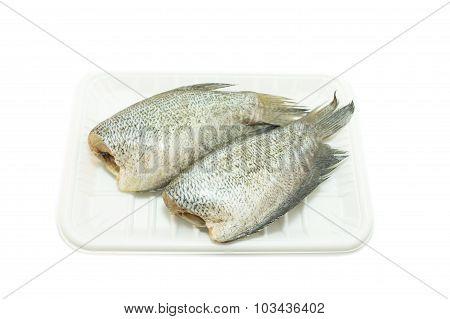 Snake Skin Gourami Fish(trichogaster Pectoralis) On White Background