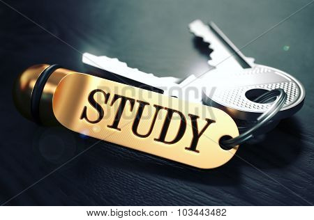 Keys with Word Study on Golden Label.