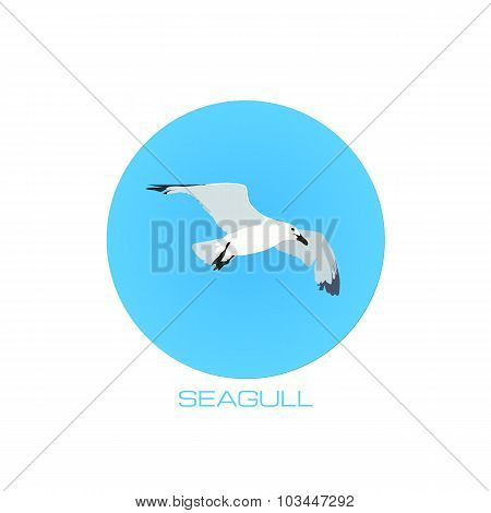 White seagull at blue sky round background