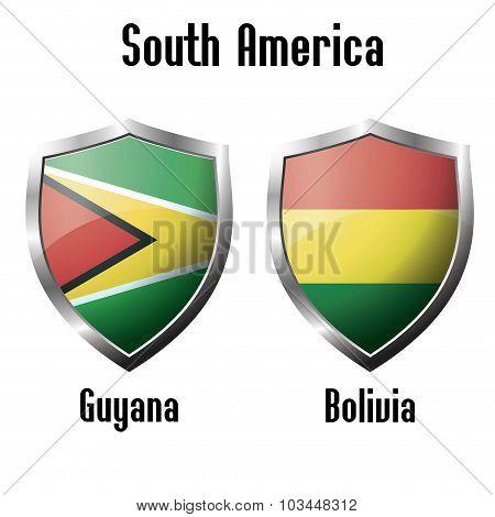 Guyana And Bolivia Flag Icons Theme