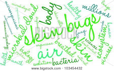 Skin Bugs Word Cloud
