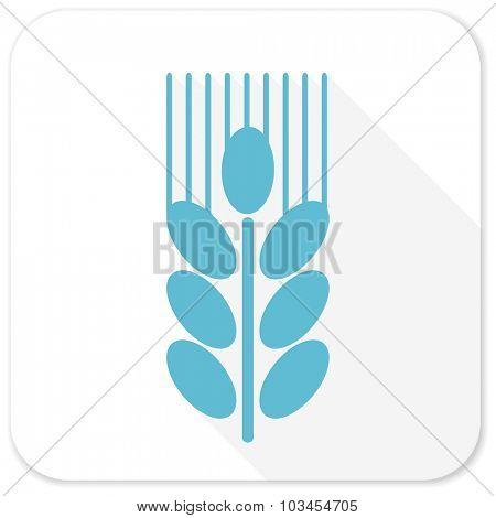 grain blue flat icon