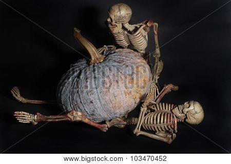 Pumpkin Over Skeletond