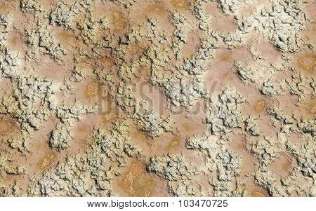 Soil Wet Texture
