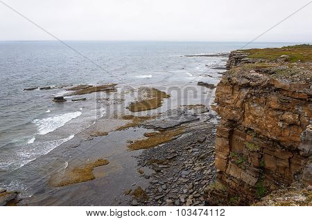 Cliffs At Barents Sea On Summer Foggy Day