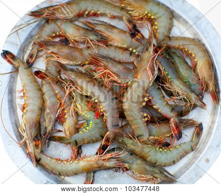 Fresh Shrimp At The Market
