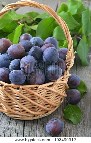 Plums In Basket On The Wooden Table