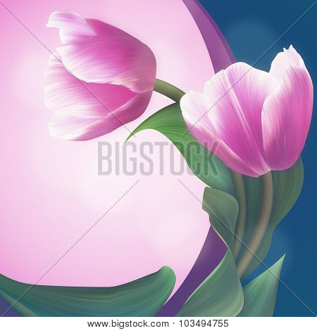 Pair Of The Soft Pink Tulips In Beautiful Green Frame. Unique Banner For Congratulation, Conceptual