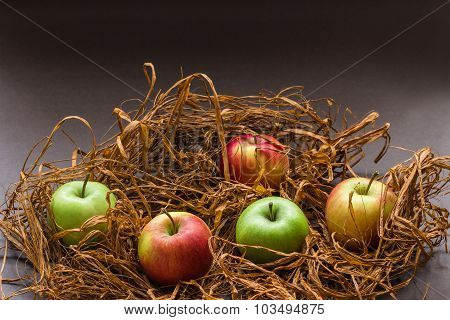 Apples On Artificial Brown Grass