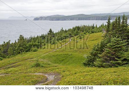 Coastal Trail In Newfoundland