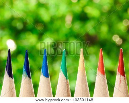 Color Pencil On Green Bokeh