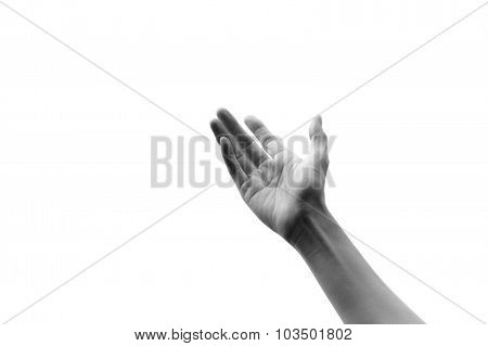 Black And White Tone Young Woman Hand On Sky